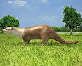 European Otter 3d model