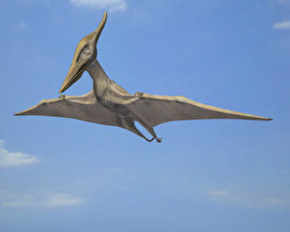 3D model of Pteranodon