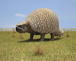 3D model of Glyptodon