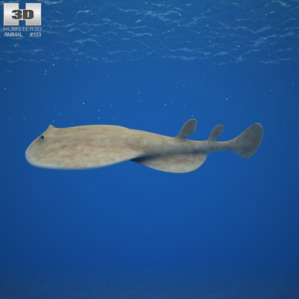 Pacific Electric Ray 3d model