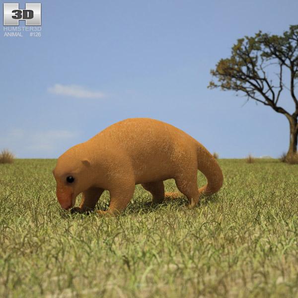 Silky Anteater 3D model