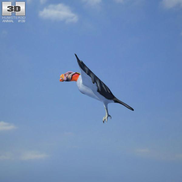 King Vulture 3d model