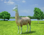 3D model of Llama