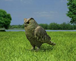 Eurasian Eagle-Owl 3D model