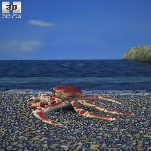 Red King Crab 3d model