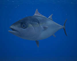 3D model of Atlantic Bluefin Tuna