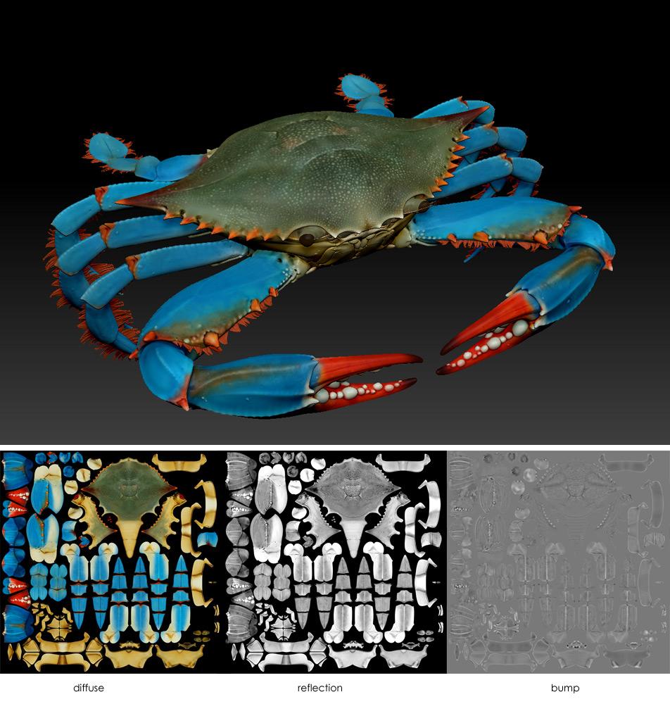 Making of Blue Crab