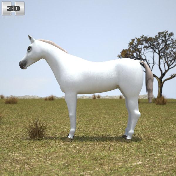 Arabian Horse 3d model