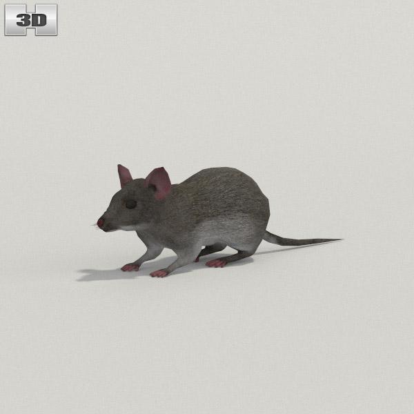 Mouse Gray 3D model