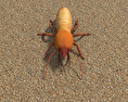 Termite 3d model