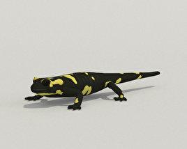 3D model of Spotted Salamander