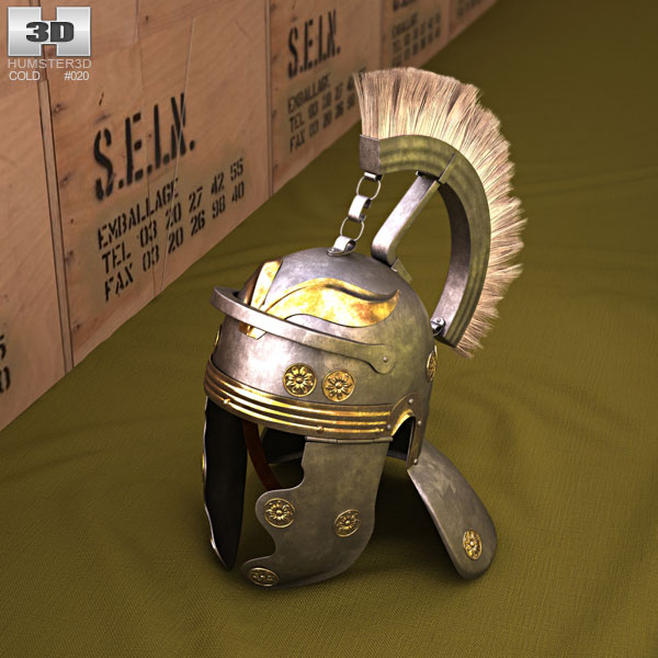 3D model of Galea