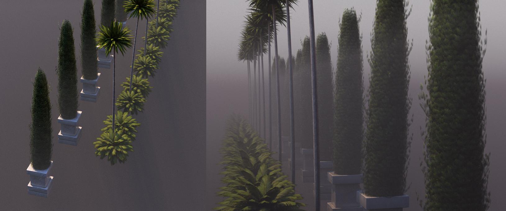 bridge and plants