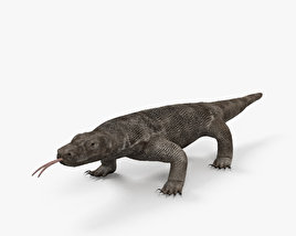 3D model of Komodo Dragon HD