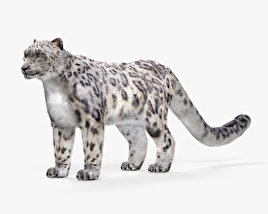 3D model of Snow Leopard HD