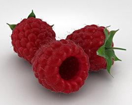 3D model of Raspberry
