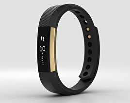 3D model of Fitbit Alta Black/Gold