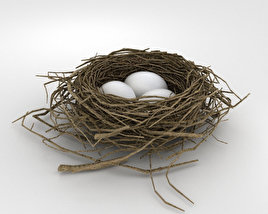 3D model of Bird Nest