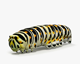 3D model of Caterpillar HD