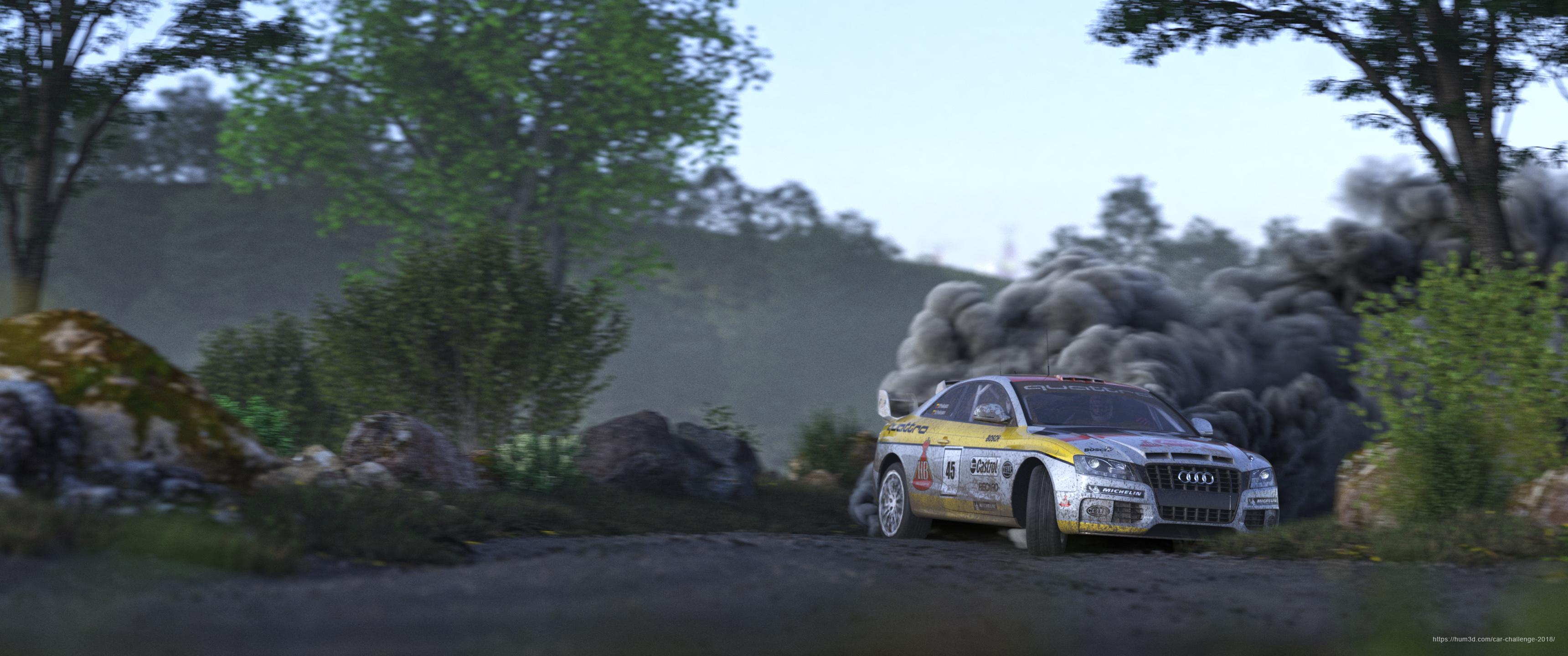 Rally 3d art