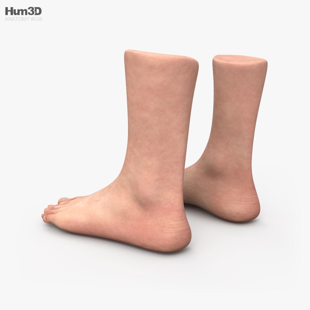 Male Foot 3d model