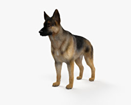 German Shepherd HD 3D model