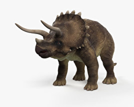 3D model of Triceratops HD