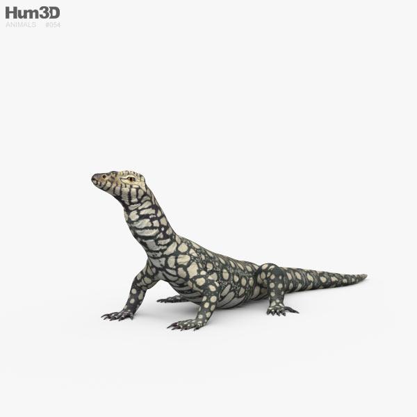 3D model of Perentie HD