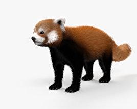 3D model of Red Panda HD