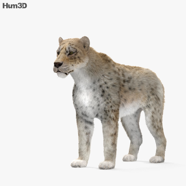 Homotherium HD 3D model