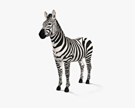3D model of Zebra HD