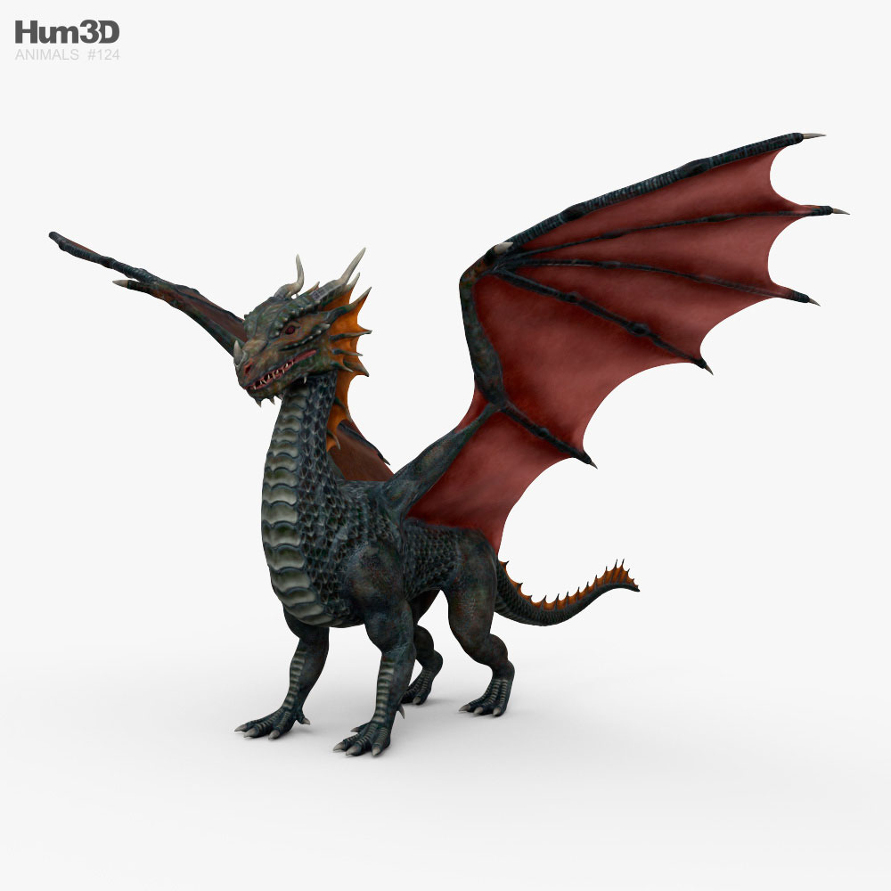 European Dragon 3D model