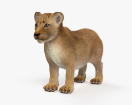 3D model of Lion Cub HD