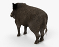 Wild Boar HD 3d model