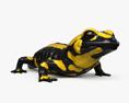 Salamander HD 3d model