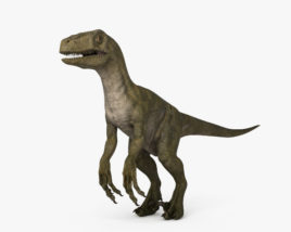 3D model of Velociraptor HD