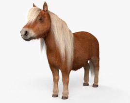 Shetland Pony HD 3D model