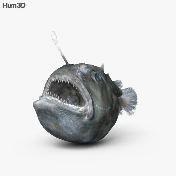 Anglerfish HD 3D model