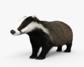 3D model of Badger HD