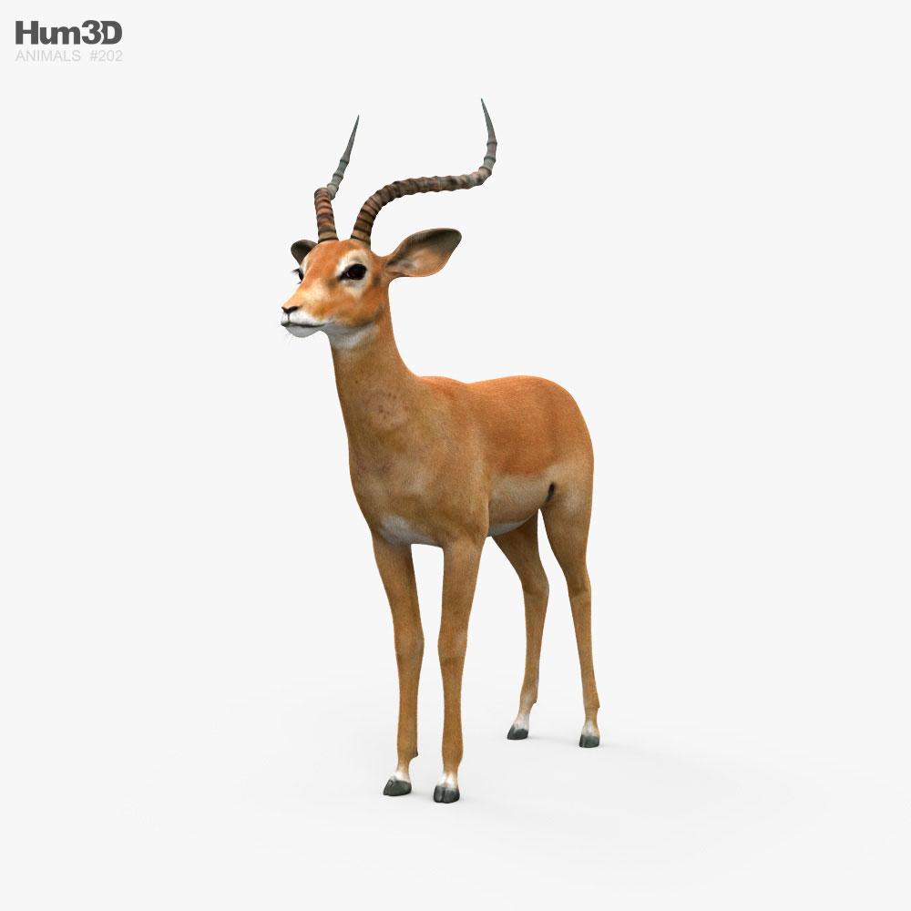 Impala HD 3d model
