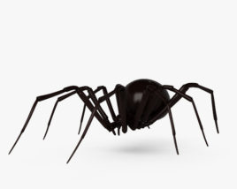 Black Widow Spider HD 3D model