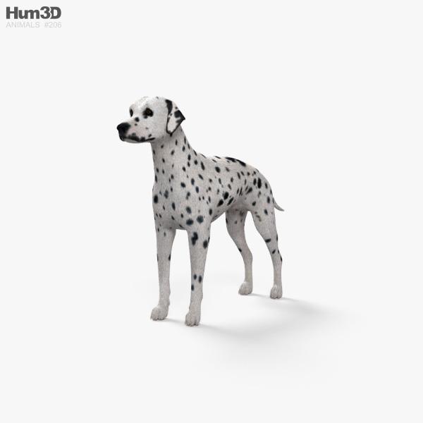 Dalmatian HD 3D model