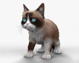 Grumpy Cat HD 3D model