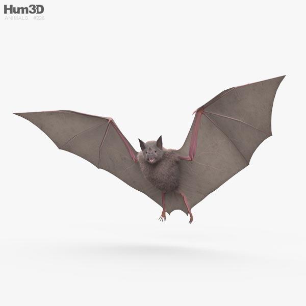 Common Bat HD 3D model