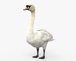 疣鼻天鹅 3D模型