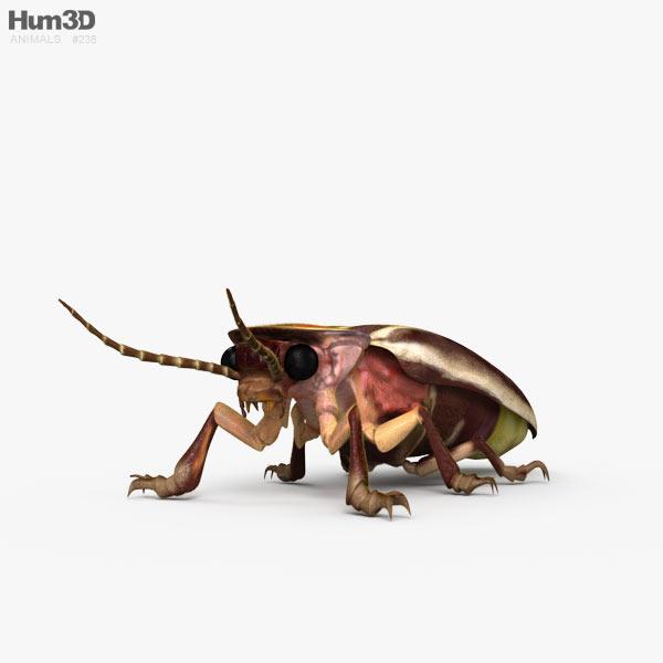 Firefly HD 3D model