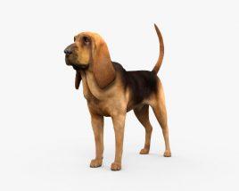Bloodhound HD 3D model