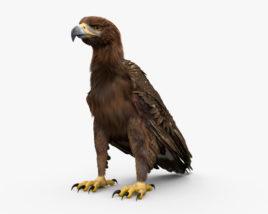 3D model of Golden Eagle HD