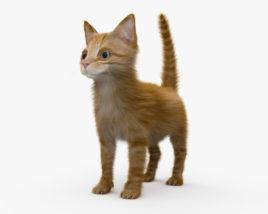 Ginger Kitten HD 3D model