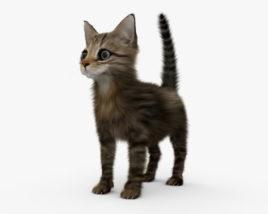 Kitten HD 3D model